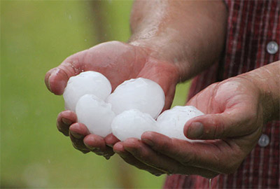 hands holding golf sized hail
