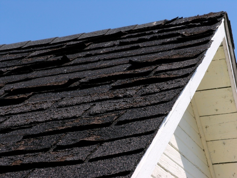 damaged roof shingles on roof