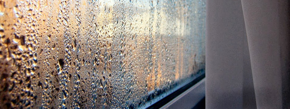 moisture droplets on window