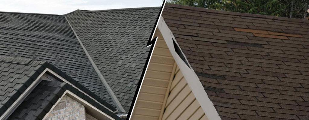 shingle roof lifespan